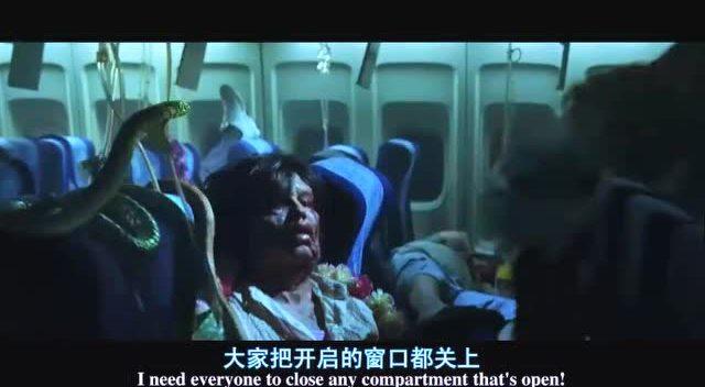 我就问一句话,飞机上怎么来的蛇