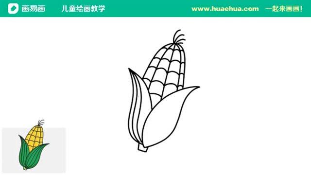 简笔画 怎么画玉米