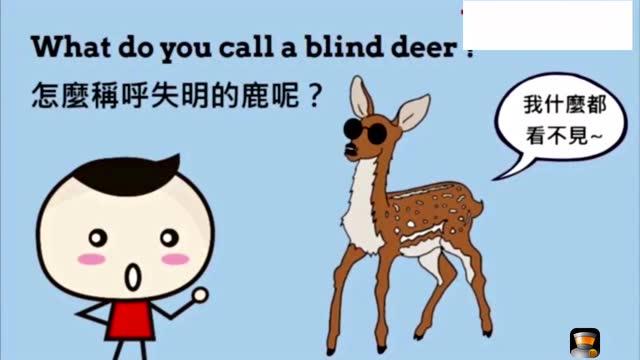 每日一分钟 英语ok啦2 《动物》英语口语初学者适用