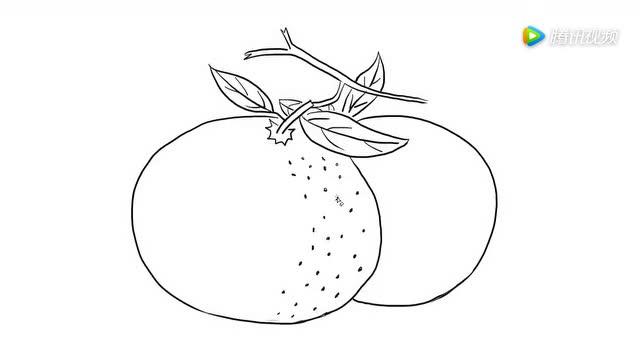 水果蜜橘儿童亲子简笔画