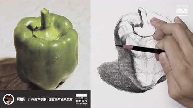 国君美术 静物结构素描 单体 青椒 柯略