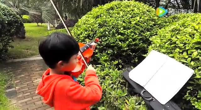 小提琴新春乐图片