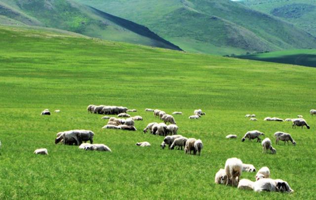 【航拍中国】之青海省河南蒙古族自治县