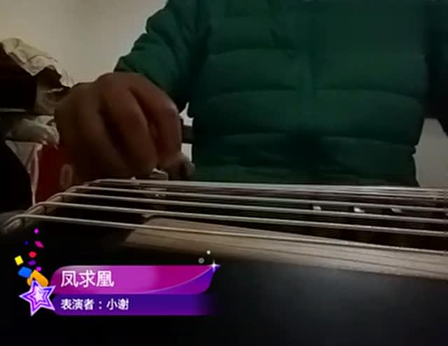 古筝《凤求凰》