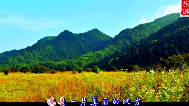 壁纸 成片种植 风景 植物 种植基地 桌面 640_360