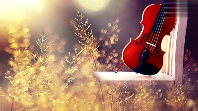 《天边》作曲家周天编配 小提琴:陈蓉晖