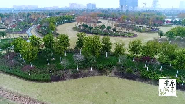 平湖好风景之钟埭街道枫叶公园