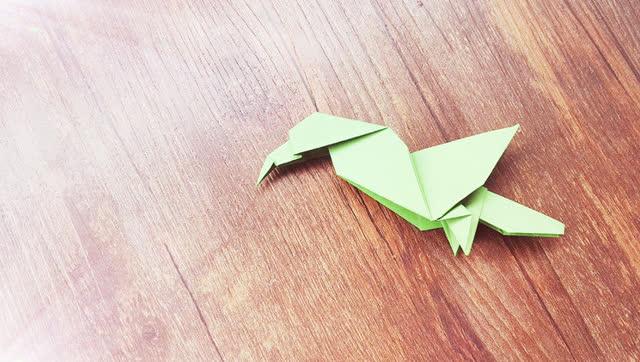 diy爱手工 动物折纸 简单折纸 大嘴鸟