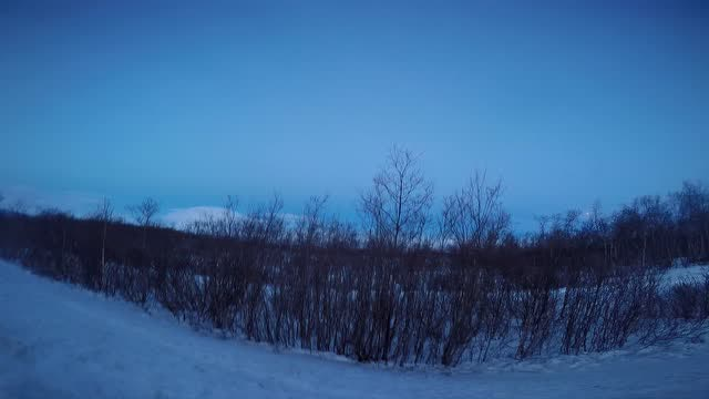 阿比斯库北极圈