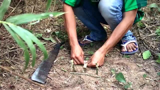 柬埔寨:农村小火用竹子制作动物陷阱,幸好不是在国内