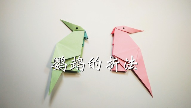 亲子手工折纸,鹦鹉的折法