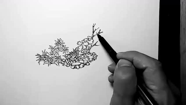 汤向钢笔画——风景速写入门教程 第一季:小路边的杂草丛