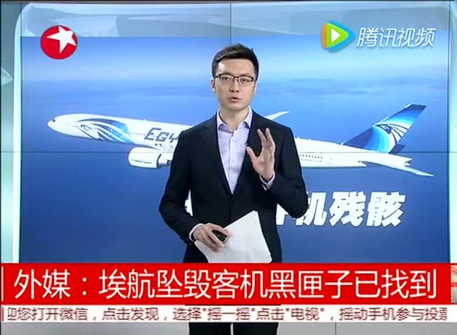 外媒:埃航坠毁客机黑匣子已找到 东方大头条 160522