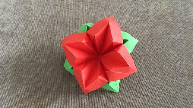 手工折纸:简易花朵