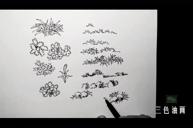风景速写入门教程钢笔写生 小草