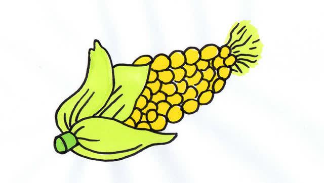 超好学的玉米简笔画哦!为爱画画的宝贝们收藏咯图片