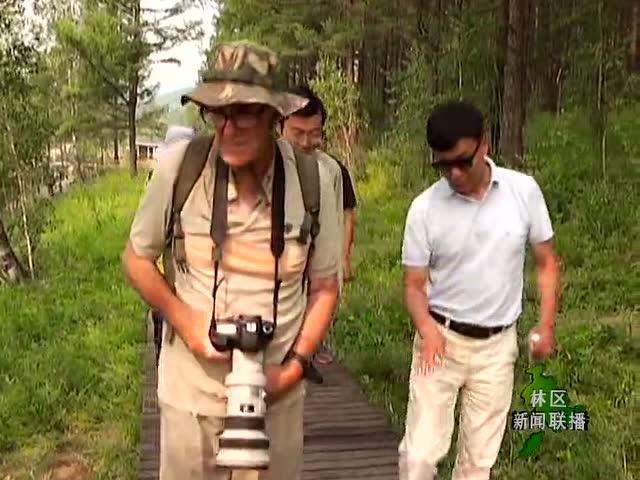 内蒙古大兴安岭电视台20160727林区新闻联播