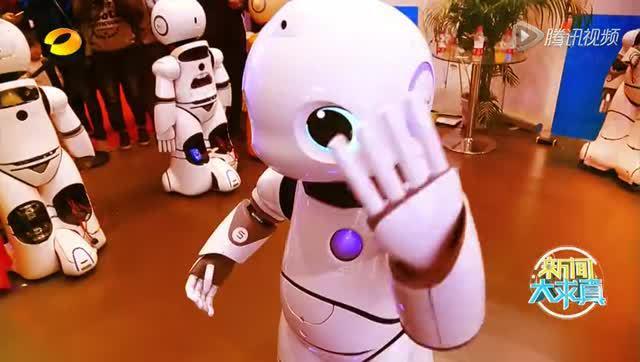 陪伴型机器人