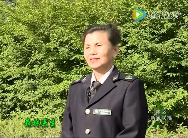 内蒙古大兴安岭电视台20160902林区新闻联播
