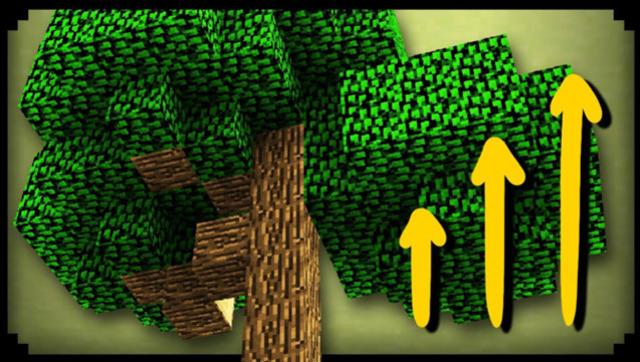 《我的世界》大马哥教你在花园里种出一棵参天大树