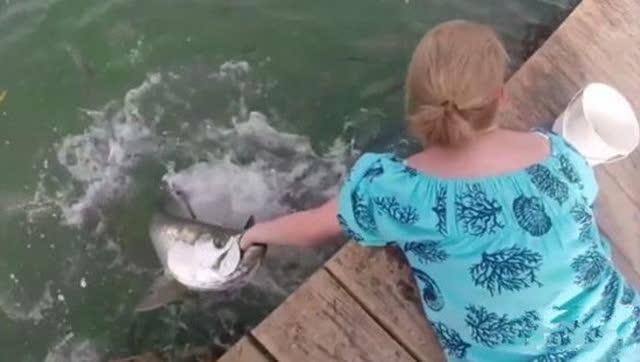 女子将手靠近水面喂鱼 下一幕让她后悔