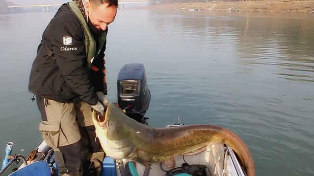 老外探鱼器实战视频,随时随地钓大鱼