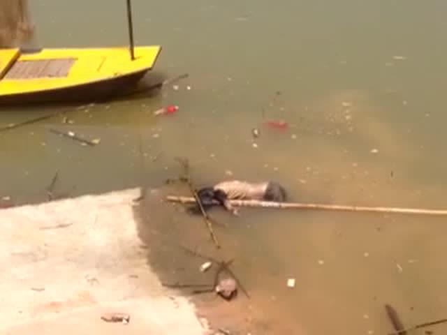 打捞女尸优酷网视频_河里打捞起一具女尸