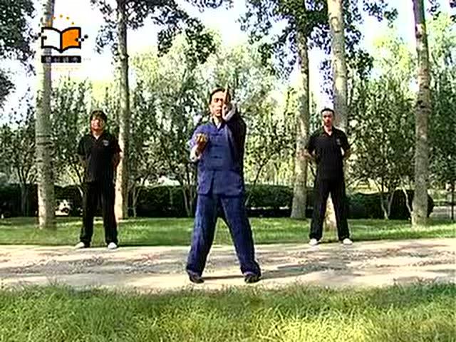 咏春拳的高级搏斗招式图片