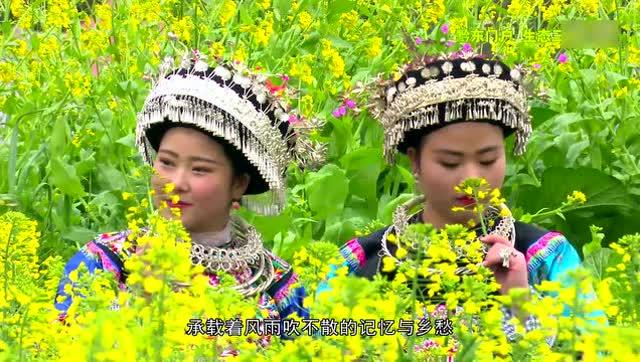 贵州黔东南三穗县旅游宣传片