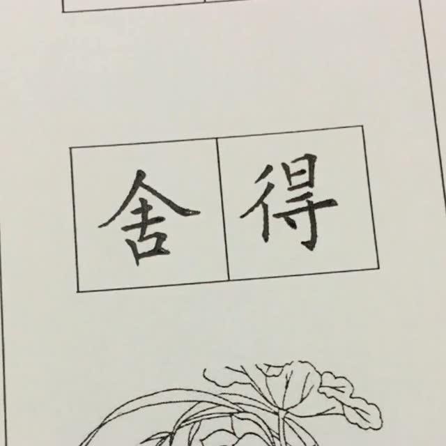 硬笔书法,圆珠笔写楷书