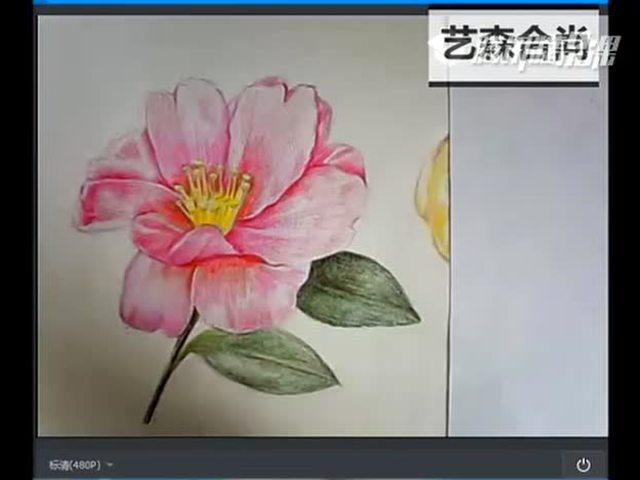 零基础彩铅绘画教学课程