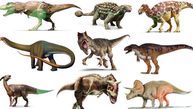 恐龙包头 矢量图