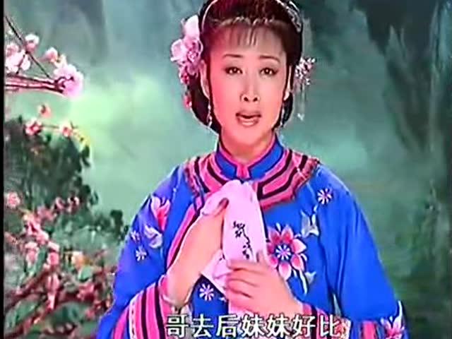黄梅戏韩再芬专辑 黄梅戏《小辞店》唱段