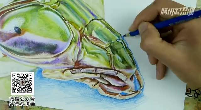彩铅马克笔画:螳螂头部