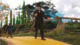 《魔境仙踪》片段2-飞猴芬利的香蕉冷笑话
