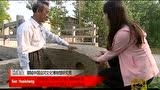 走遍中国:齐鲁春秋——打虎英雄出阳谷
