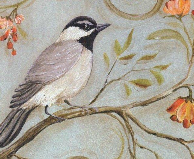 国画教学 工笔花鸟常见翎毛的重彩画法
