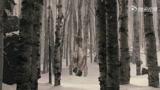 白雪公主之魔镜魔镜 超清版预告片