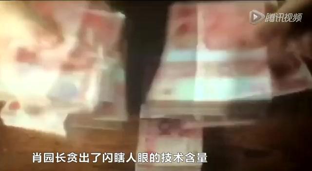 新闻晚8点:小官大贪动物园长贪千万 假币工厂百元大钞卖2元截图