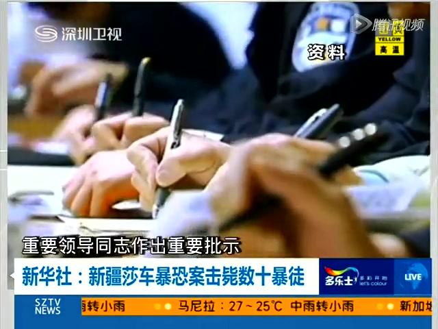 新华社:新疆莎车暴恐案击毙数十暴徒截图