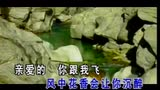 郑源 - 两只蝴蝶