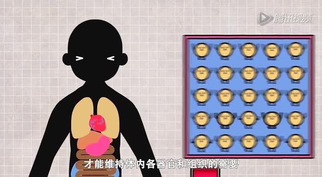 小得健康 第二期:糖尿病 甜到忧伤截图