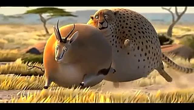 全世界的动物都变成胖子之后.(转载)