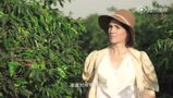 《缪斯之旅》第五集凯伦·布里克森:独立的冒险者