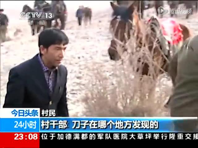 实拍新疆警民联合追捕爆恐分子:万人抗农具搜山截图