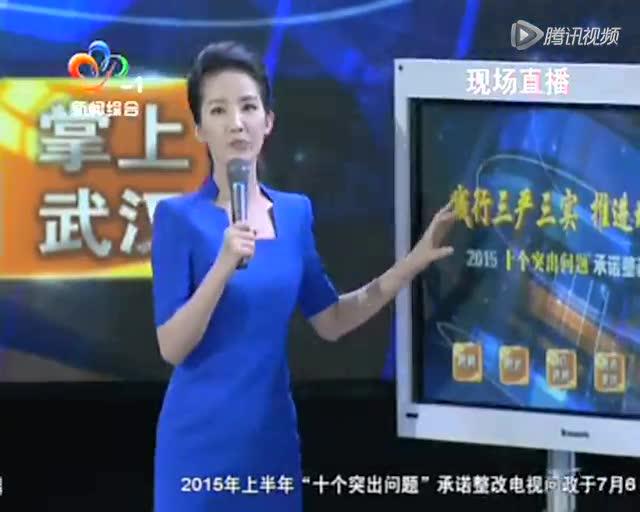 2015武汉电视问政:40万南湖居民出行难截图
