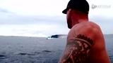 型男鲸鱼新奇冲浪震撼视界 巨鲸空中转身征服海浪