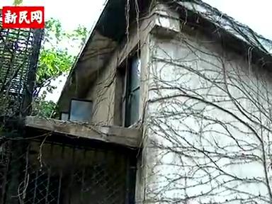 上海动物园9岁华南虎咬死57岁饲养员截图