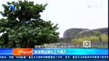 迎接东亚运动会:场馆周边开始绿化