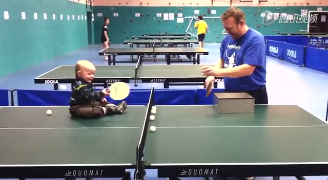 乒乓球体育_乒乓球_v体育视频广州斗鸡多少一只图片